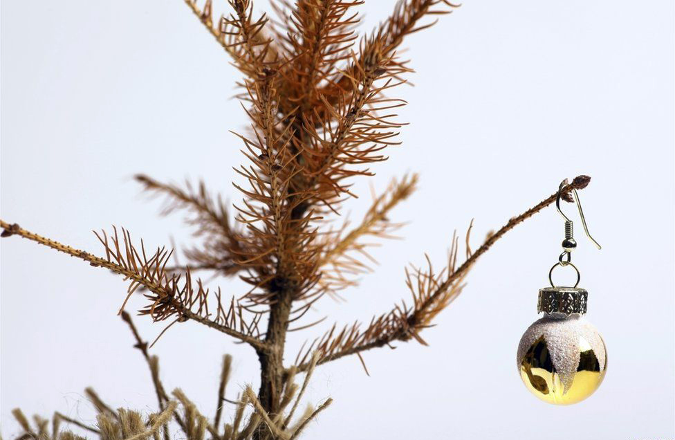 Yes Waste collects garden waste including Christmas Trees